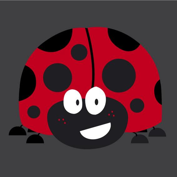 Ladybird 0.8m x 0.8m