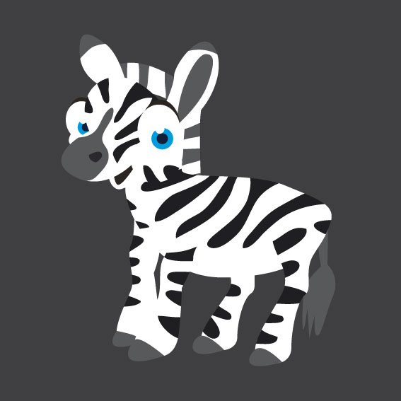 Zebra 1m x 1m
