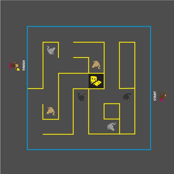 Cat & Mouse Maze 5m x 5m