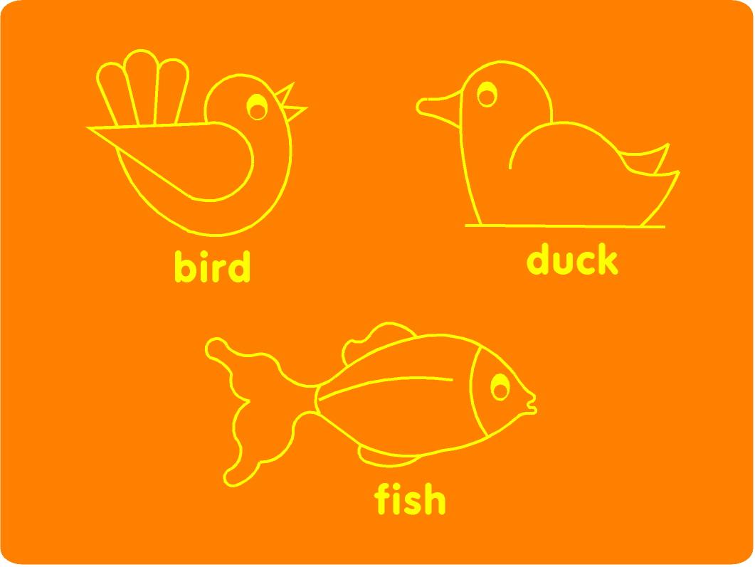 Bird Duck And Fish