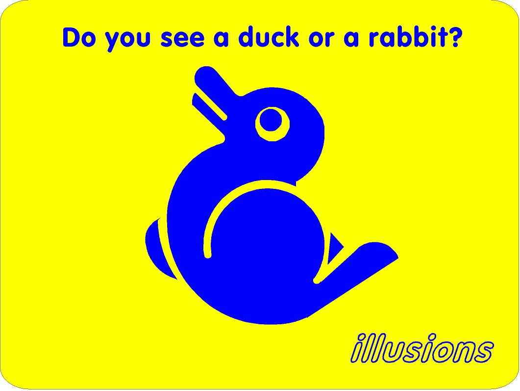 Illusion Duck